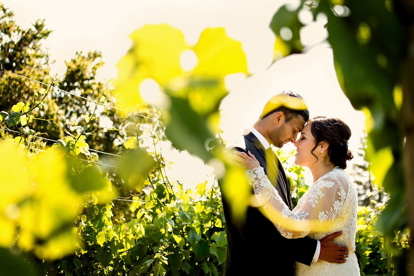 Vineyard Wedding Photo